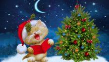swieta__boze_narodzenie__christmas_3840x2400_006_kot__choinka__ksiezyc__gwiazdy__czapka_mikolaja